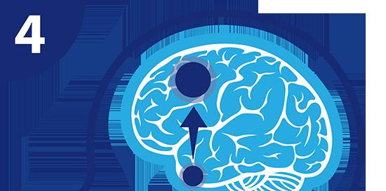 TABEX® vermindert de afgifte van dopamine
